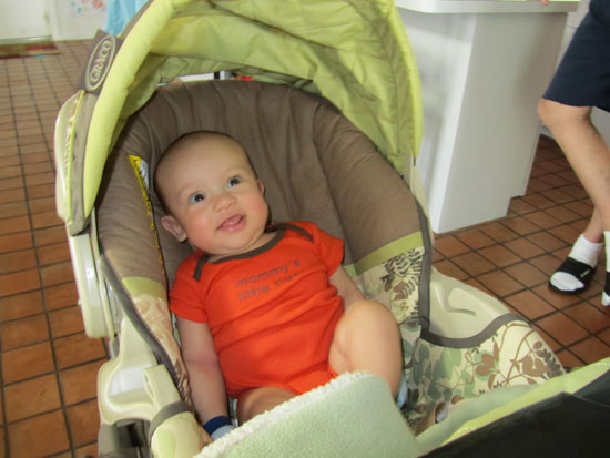 Happily hanging out in the stroller