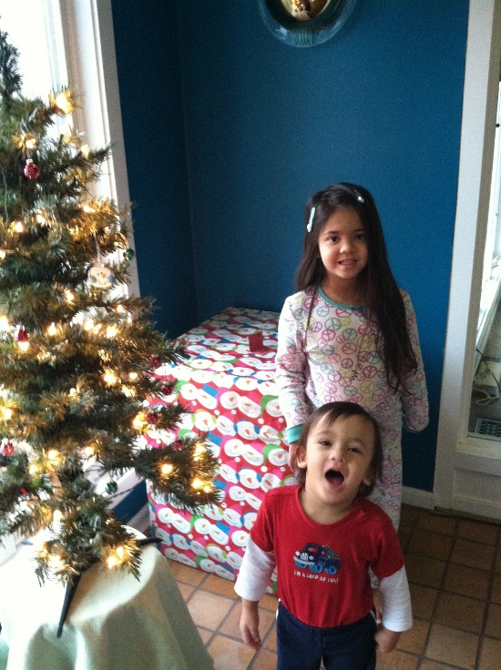 Yaya and Adik are crazy about the big wrapped box by the tree!