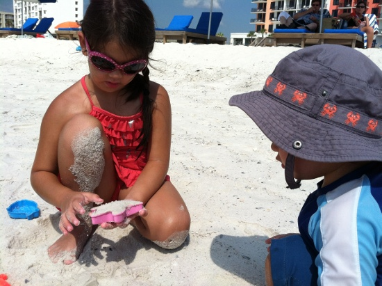Diva sunglasses and sand starfishes