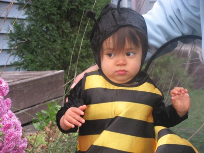 Memo to Bee Baby- Bees LIKE flowers