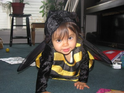 Buzzy Bee Baby