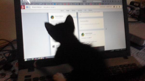 Betty loves Google+