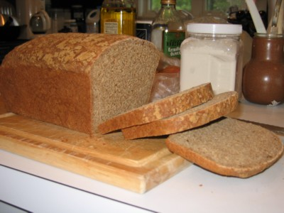 Sprouted Wheat Bread, 1st Try