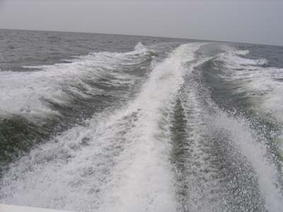 The wake from Dean's boat