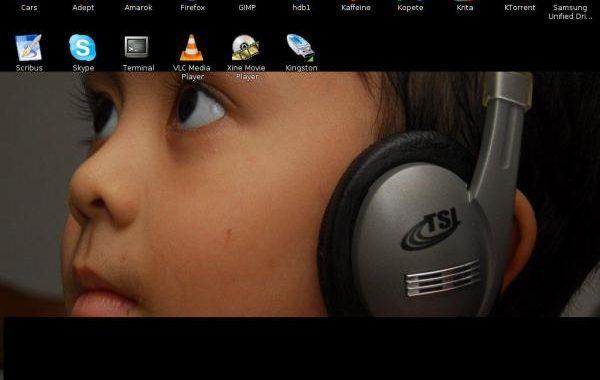 Irfan on the new desktop
