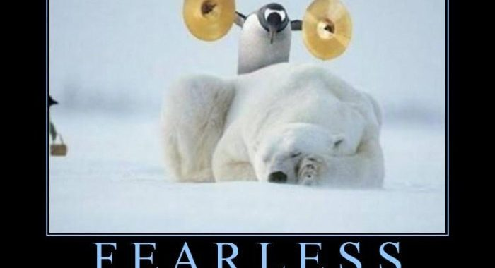The fearless penguin strikes