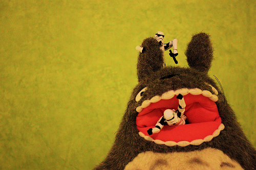 TK479 & TK455 Vs. Totoro