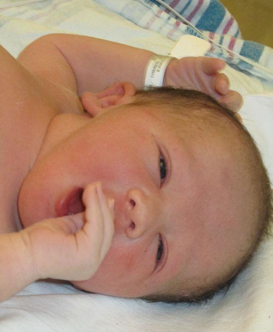 Pondering the world ex-utero