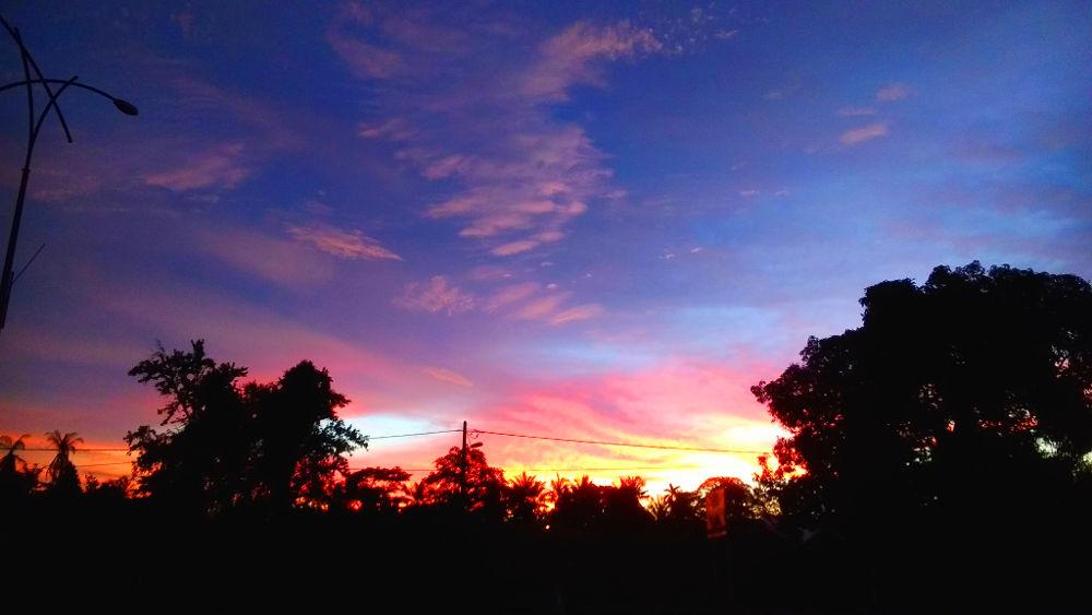Post-rat disposal sunset