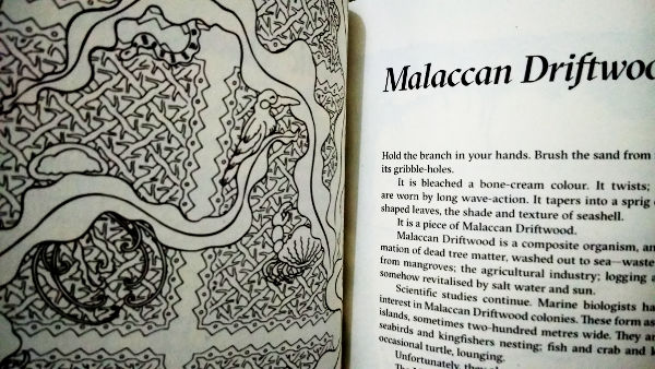 Malaccan Driftwood